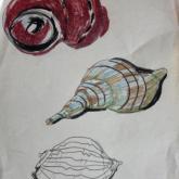 20 let, studie přírodnin, tuška, olejové pastely